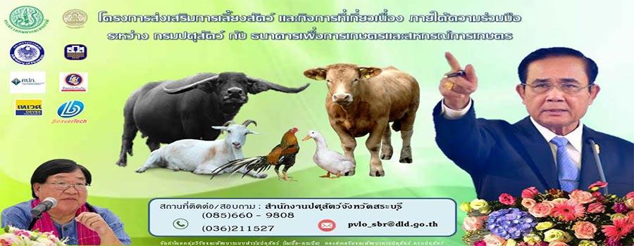 โครงการส่งเสริมการเลี้ยงสัตว์ และกิจกรรมที่เกี่ยวข้อง ภายใต้ความร่วมมือระหว่าง กรมปศุสัตว์ กับ ฑนาคารเพื่อการเกษตรและสหกรณ์การเกษตร